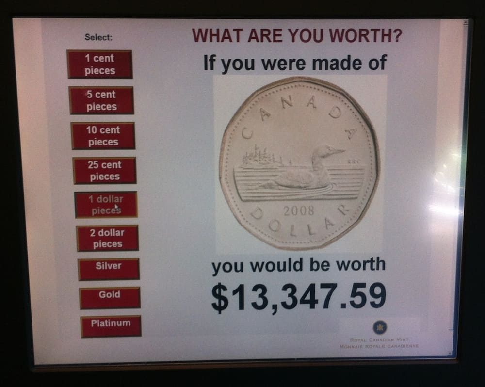 Royal Canadian Mint in Winnipeg What I Weigh in Loonies