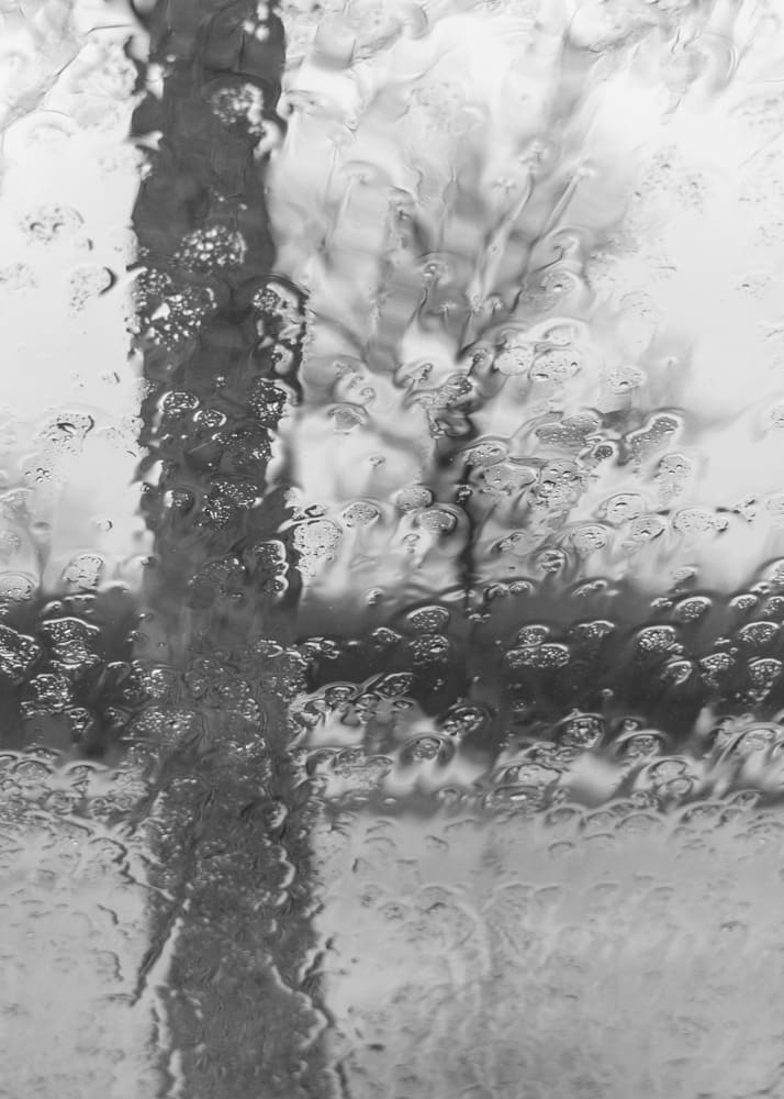 waiting for the rain to stop - a black and white picture of two trees through a rain covered car window